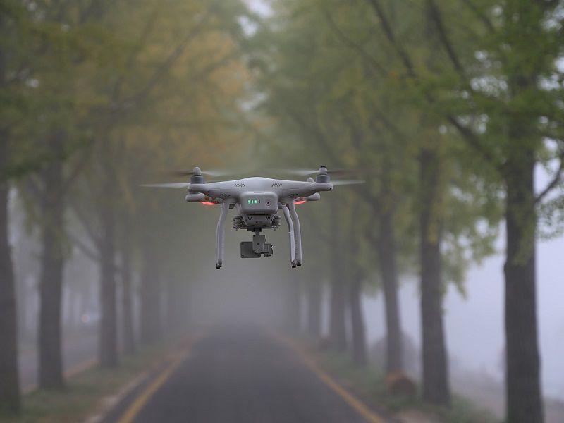 Hejna dronů pomáhají zalesňovat oblasti zničené ohněm