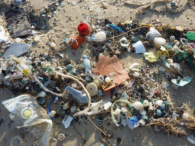 Do roku 2050 převáží v oceánech nad rybami plasty, tvrdí žaloba proti Pepsi či Nestlé