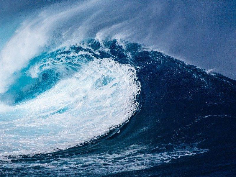 Kdyby každý plul jako Greta, zničí přírodu víc než letadla, tvrdí mořeplavec