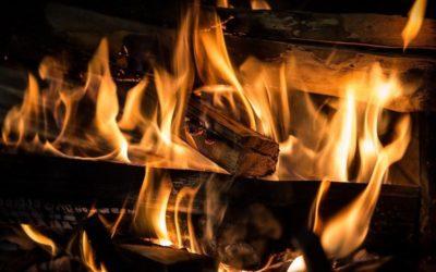 Estonský objev: dřevo snižuje emise CO2 při spalování ropné břidlice